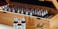 Bachbloesemremedies volledige kits en toebehoren