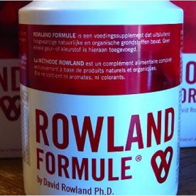 Rowland Formule bloedvatenreiniging 300 tabletten