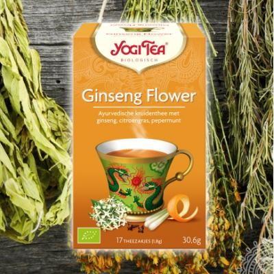 Yogi thee Ginseng